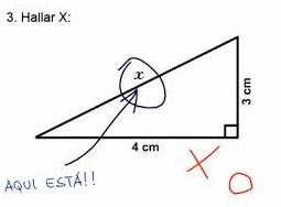examen risa 1 (2)