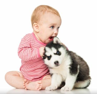 nen i gos.PNG